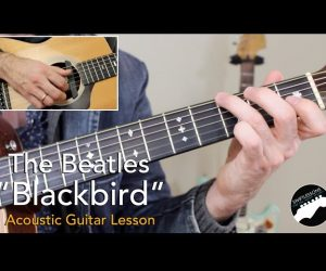Beatles 'Blackbird' – Complete Acoustic Guitar Lesson